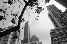 hong kong skyscrapers hire travel art director