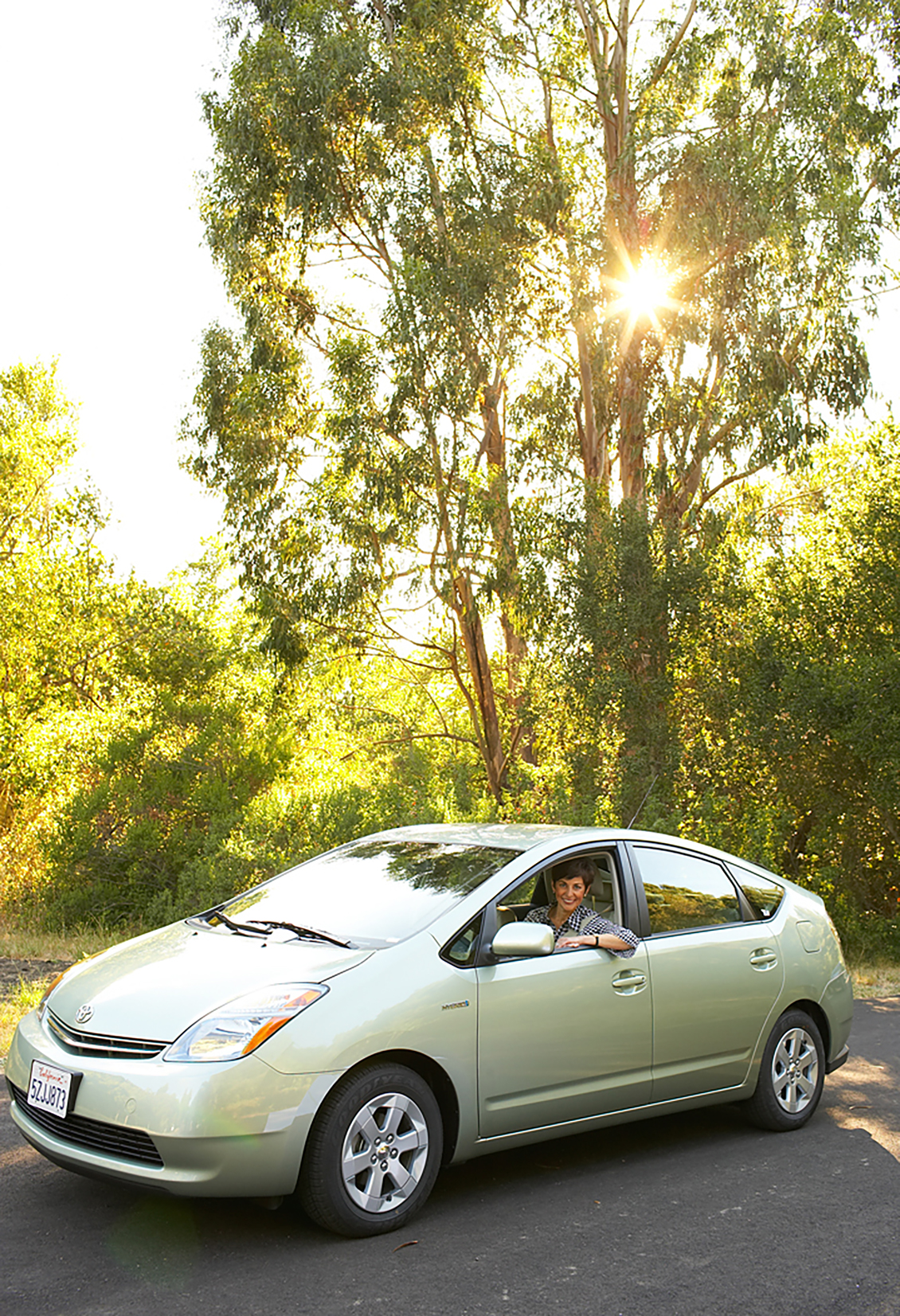 Prius and tall trees brand photography