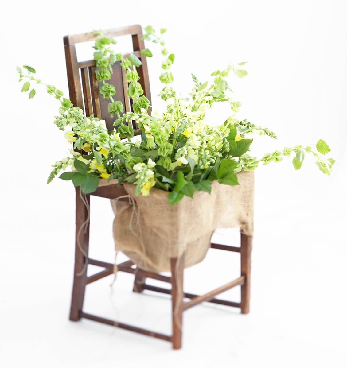 chair plant best interior design photography