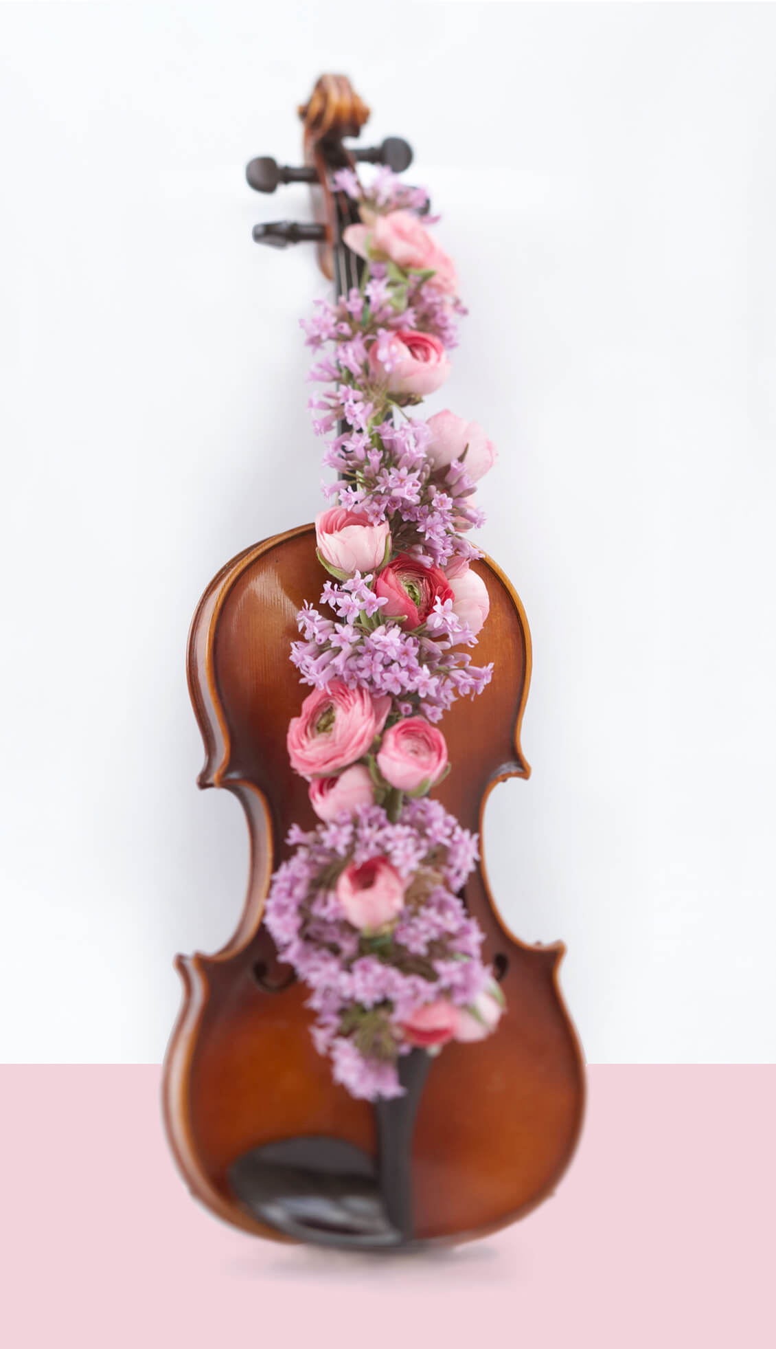 violin with flowers interior design photography